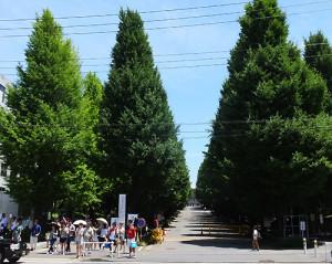 慶應大学日吉キャンパス