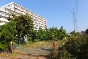 佐分利保育園つなしま園の建設予定地はかつて農地だった場所、左に写る建物はコンフォール南日吉のD棟