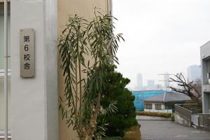 雨空の下、遠くに見えるは武蔵小杉のタワーマンション