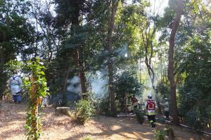 煙が立ち上る火災発生現場(2016年2月11日11時25分ごろ)