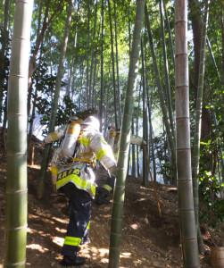 火災現場は公園上部の竹林を上り切った場所だった