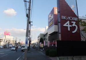 鶴見川を渡った先には「ビッグヨーサン」(右、樽町)と「イオン」(左側、鶴見区駒岡)がある