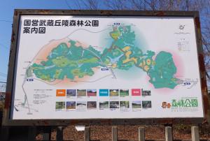 森林公園はとにかく広く、東京ドーム65個分だという