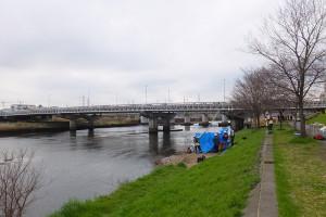 発見された場所は大綱橋の下流、綱島東1丁目の河川敷