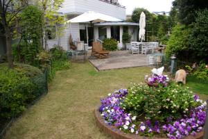 牡丹、クレマチス、そしてが紫陽花の花が大好きという万里村さん。「梅雨の時期には、紫陽花を外からも眺められるよう、スクリーンを開けておきますのでご覧になれます」とのこと