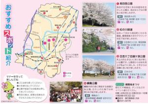 広報「よこはま」3月号の港北区版には桜の名所が紹介されています