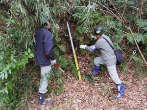 がけ地調査の様子(横浜市のニュースリリースより)
