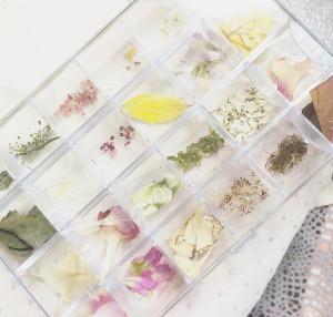 花や草など、自然にあるものを使用したネイル素材。下田に住むMEGUMIさんが「近所にあるものや、子どもから送られた花も使用しています」と色とりどり用意している。素材持ち込みもOK(写真:メイグネイル提供)