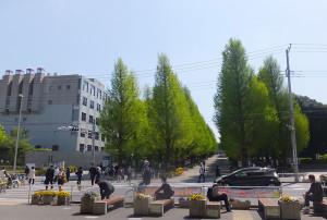 東急日吉駅東口の目の前に広がる慶應大学日吉キャンパス