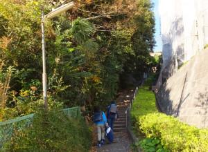 今回選定された日吉本町2丁目の斜面付近に設けられた歩行者通路は通学路にもなっている