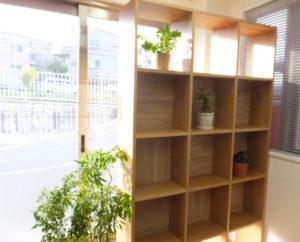 緑の植物が見守る空間でリラックスして相談に臨んでもらいたいと澤口さん