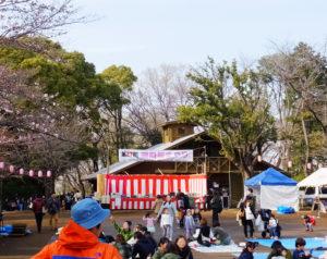 昨年(2017年)の様子。イベント終了後ものんびりたたずむ家族連れらが多くみられた。「この日以外でも、綱島の街で桜を楽しんでもらえたら」と中森さん