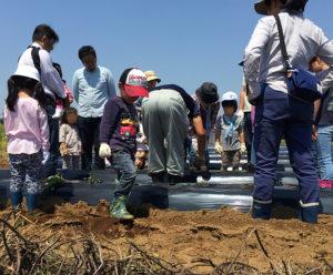 横浜・高田にある藤田農園での農業体験プログラムは2015年から行われ、今回(2018年上半期)は4シリーズ目の開催。「こんなところに畑があるとは」と参加者は一様に驚くという(過去の農業体験の様子、主催者提供)