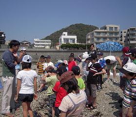 2010年5月、葉山の海岸でのタイドプール学習。大潮の日に現れる潮溜まりで生き物学習などを実施。ひよし塾では現地インストラクターに案内を依頼することで、安心して学ぶことができるという(ひよし塾提供)