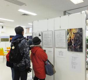 「アフリカンフェスティバルこうほく2019」として開催されている写真展。地元・綱島の写真家・井上冬彦さんの詳しいプロフィールも掲示されていました