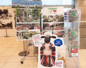 日吉東急アベニュー(日吉2)内の天一書房日吉店前では、日吉の街の展示を行う「平成ファイナルフェスタ」に合わせ、初めて港北オープンガーデンのPR展示が行われている(2019年4月18日)