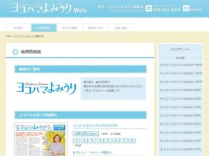 タブロイド版の「ヨコハマよみうり」は、読売新聞の定期購読者や、チラッシュのサービス利用者を対象に折込配布される。バックナンバーは同サイト上からもPDFファイルなどで閲覧が可能