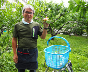 江戸時代から続く池谷家の第16代当主・池谷道義さん。弟の聡さんとともに桃の収穫に励む(2019年7月10日)