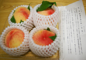 今年も、希少な「綱島の桃」の味を楽しめますように(2016年の販売時)
