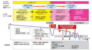 心不全とそのリスクの進展ステージ(厚生労働省2017年資料を改変、日本循環器学会・日本心不全学会合同ガイドライン=PDFファイル)