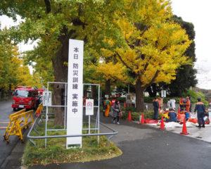 慶應義塾日吉キャンパスのシンボル・銀杏並木に、消防隊員や救急車などの関係車両が集結した(11月26日)