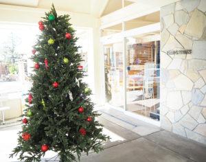 日吉5丁目にあるファミリーレストラン「パームスプリングス(PALM SPRINGS)」では、初めてクリスマス・ツリーを店頭に飾っている