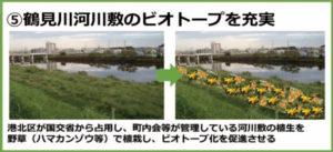 鶴見川河川式のビオトープ(生きものの暮らす場所)を充実させるという計画も。ユリを思わせるような美しい花が咲く野草「ハマカンゾウ」や「ノカンゾウ」が咲き乱れる日がやってくるかも(フローラルつなしま提供)