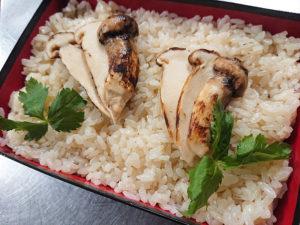 秋の季節にぴったりな「松茸ご飯」(遊ZENたつ吉提供)