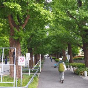 オス・メス2匹のカブトムシとともに慶應の森に向かう伊藤さん(10月3日)