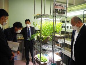 新吉田東5丁目の株式会社エネショウ(藤原雅仁社長、最右)が、「しんよこはま地域活動ホーム」(大豆戸町)で行う室内農業のチャレンジを行っている