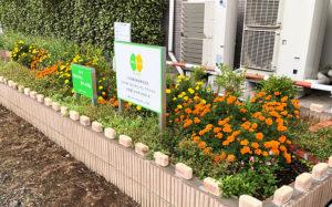 夏時期の「ピーチ花壇3」の様子。6月に植えたマリーゴールド、エキナセアなどの花たちが美しく咲き誇る(グループ花いっぱいTsunashima提供)