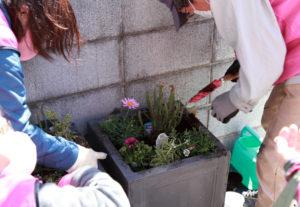 3カ年計画の「花と緑で人をつなぐ『つなしま』~つなつなプロジェクト」初年度の花植えが行われた(3月3日)