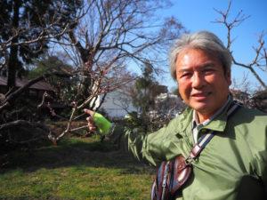 綱島・池谷(いけのや)家の桃が開花宣言。「基準木」となる日月桃(じつげつとう)の木の前で、16代目当主の池谷道義さん