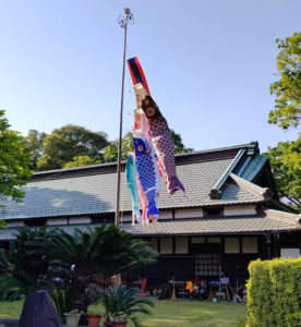 綱島の古民家・池谷家住宅に、15年ぶりに鯉のぼりが掲げられることになった。鉄道の開業を前に「変わりゆく街の風景として見てもらいたい」とのことから実現したという(4月19日、同家提供)