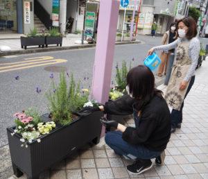 花がら摘みや水やりも行われた
