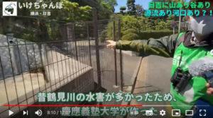 慶應義塾大学が作った水害対策の「池」についても紹介(いけちゃんねる【後編】より)