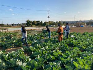 地元・港北区で自然に親しめる貴重な機会として収穫体験は人気を博しているという(同撮影・提供)