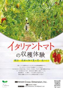 8月7日(土)から、9月26日(日)までの8日間にわたり開催される「イタリアントマトの収穫体験」案内チラシ(株式会社クロス・ディメンション提供)